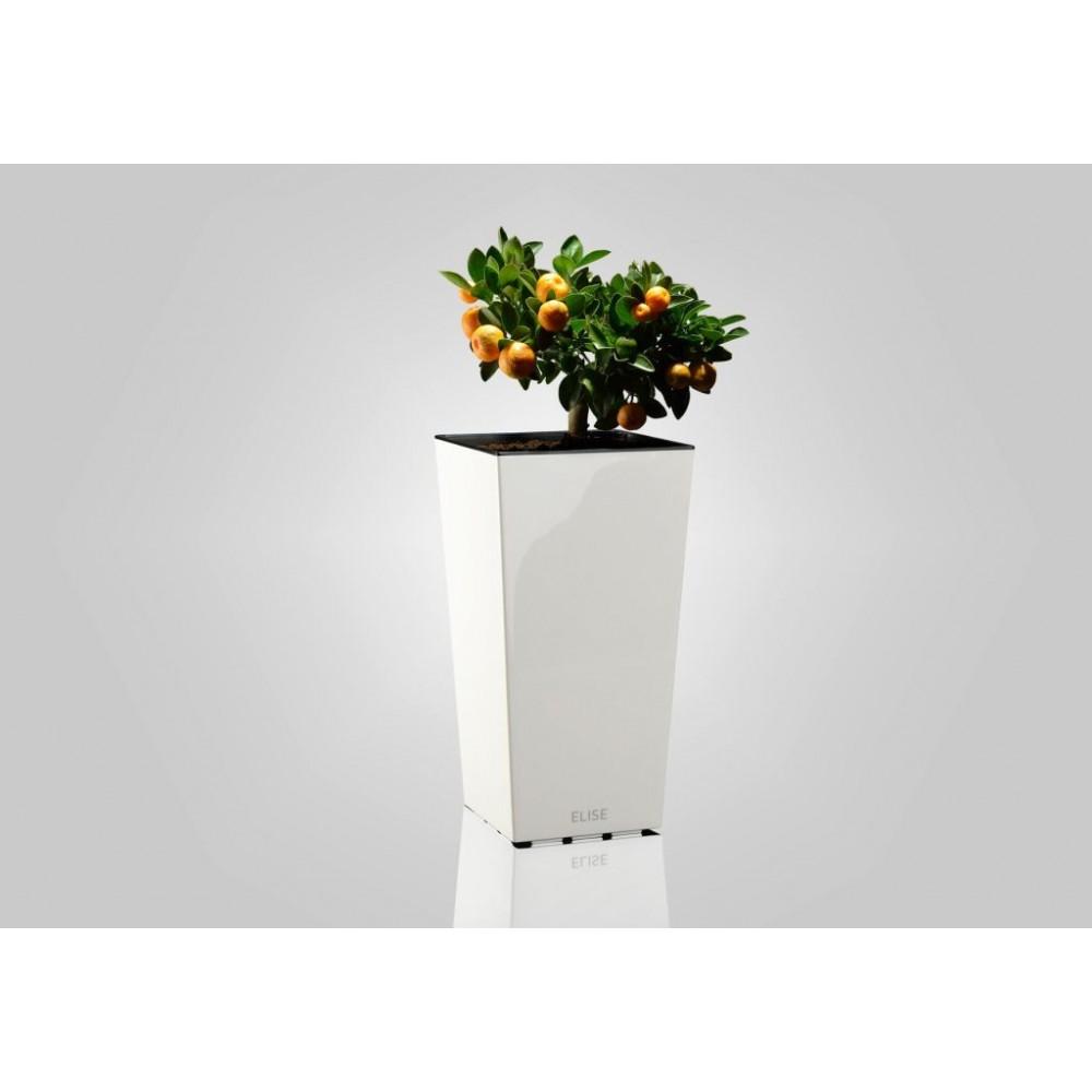 plastkon in outdoor blumentopf elise 15 cm wei gl nzend. Black Bedroom Furniture Sets. Home Design Ideas