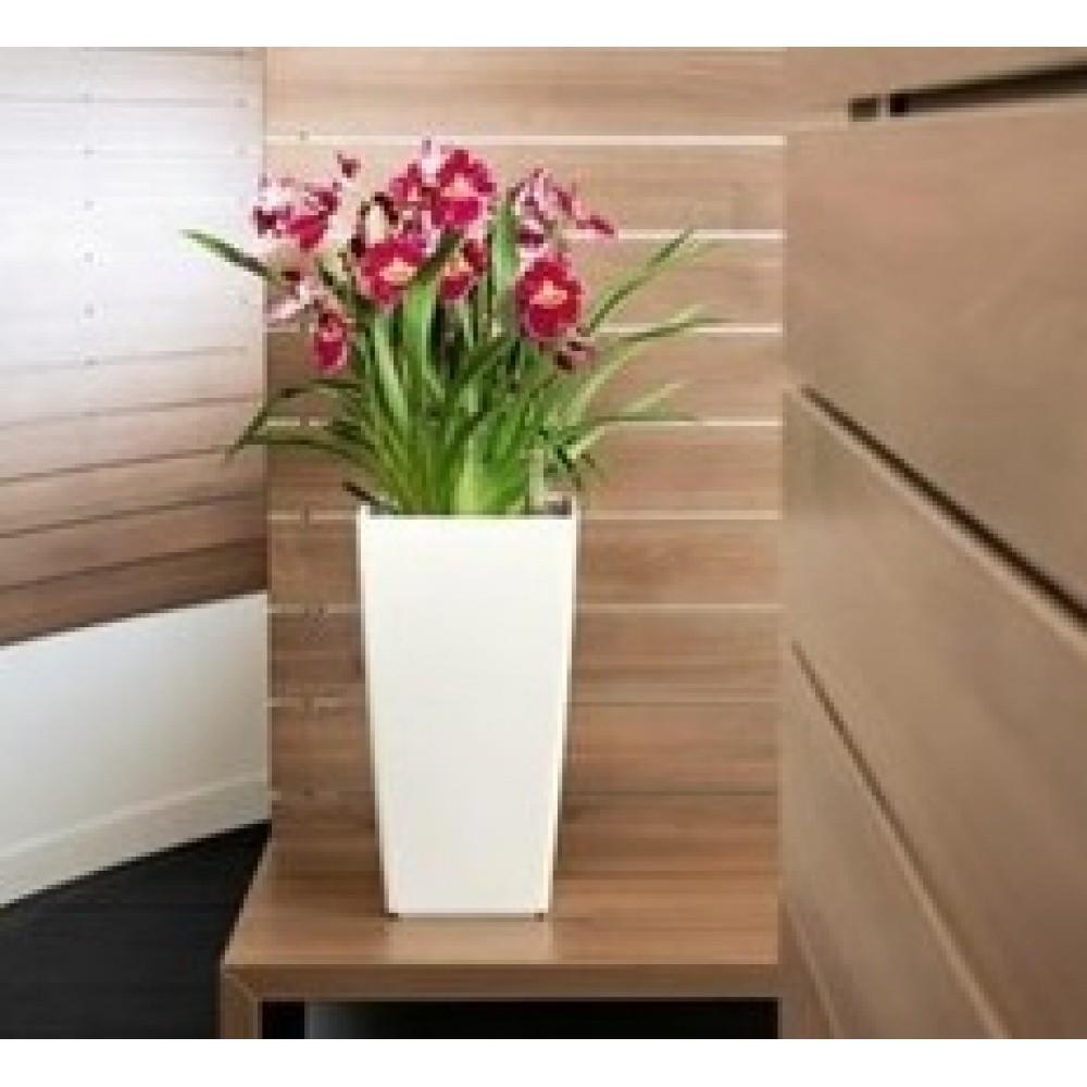 blumenk bel pflanzk bel 49l blumentopf inkl einsatz kunststoff weiss urbi durs325. Black Bedroom Furniture Sets. Home Design Ideas