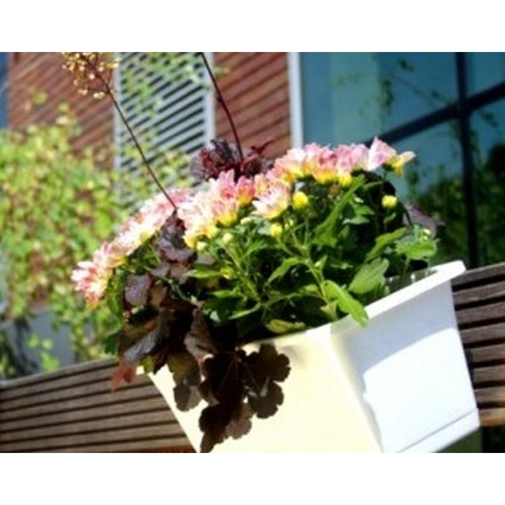 prosperplast camelia blumenkasten mit untersetzer 9l wei. Black Bedroom Furniture Sets. Home Design Ideas